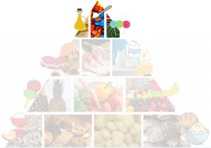 alimentos topo da piramide alimentar